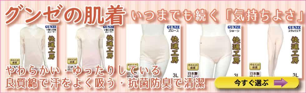 gunze_hadagi_top.jpg